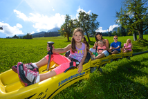 family rates of the summer tobogganing in Abtenau