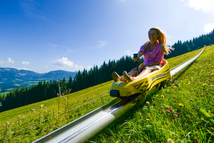 prices of the summer tobogganing in Abtenau